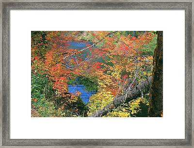 Fall Along The Upper Rogue Framed Print by Jim Nelson