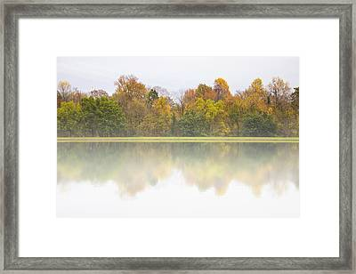 Fall And Fog Framed Print