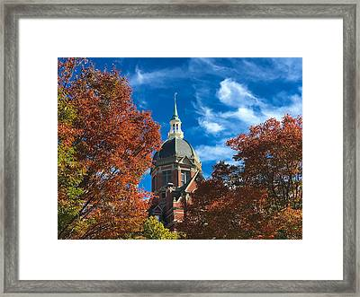 Fall And The Dome Framed Print by Mark Dodd