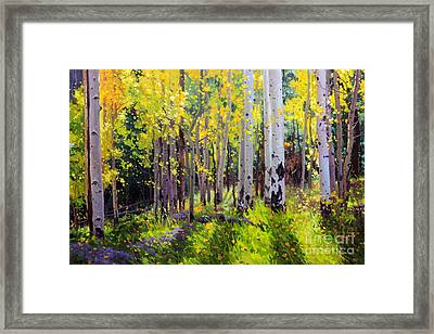 Fall Aspen Forest Framed Print by Gary Kim