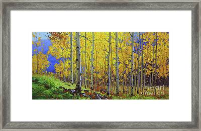 Fall Aspen Hill  Framed Print by Gary Kim