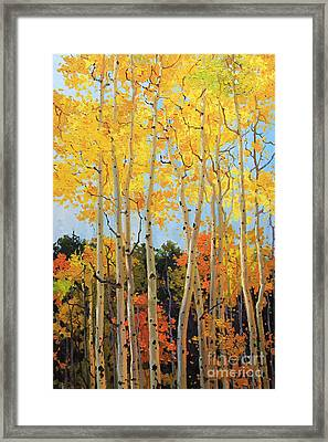 Fall Aspen Santa Fe Framed Print by Gary Kim