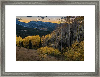 Fall Aspens At Dusk In The Wasatch Framed Print