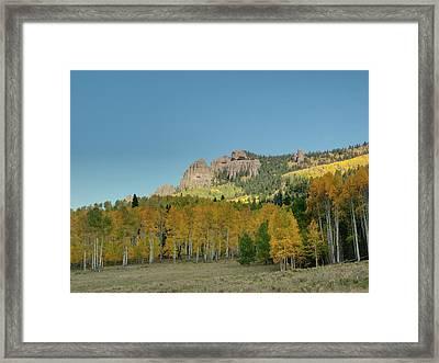 Fall Aspens Framed Print by Linda Weyers