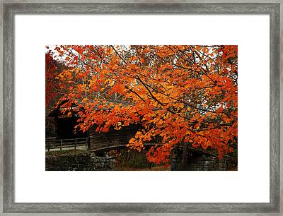 Fall At Humpback Bridge Framed Print by Cathy Shiflett