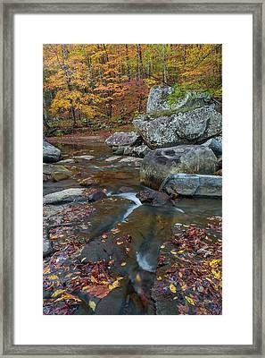 Fall At Richland Creek  Framed Print by Damon Shaw