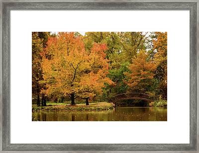 Fall At The Arboretum Framed Print