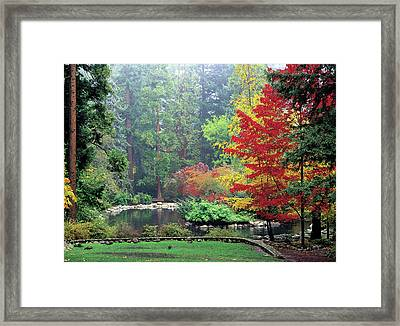 Fall At The Upper Duck Pond Framed Print by Jim Nelson