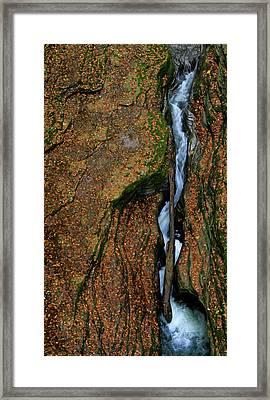 Fall At Watkins Glen State Park Framed Print