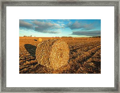 Fall Bale Framed Print by Todd Klassy