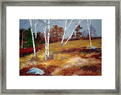 Fall Birch Trees And Blueberries Framed Print by Laura Tasheiko