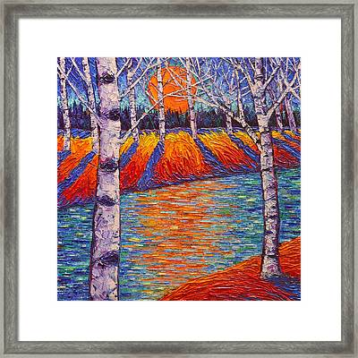 Fall Birches Sunrise 2 Contemporary Impressionist Palette Knife Oil Painting By Ana Maria Edulescu Framed Print by Ana Maria Edulescu