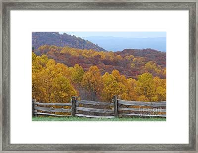 Fall Blend Framed Print by Eric Liller