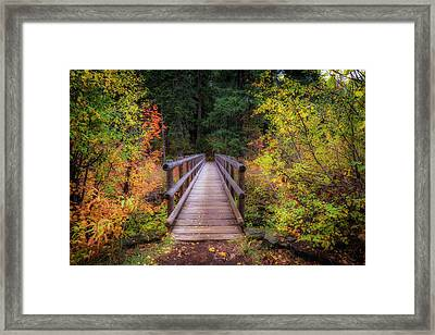 Framed Print featuring the photograph Fall Bridge by Cat Connor