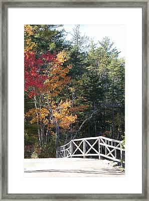 Fall Bridge Framed Print by Sue Mayor