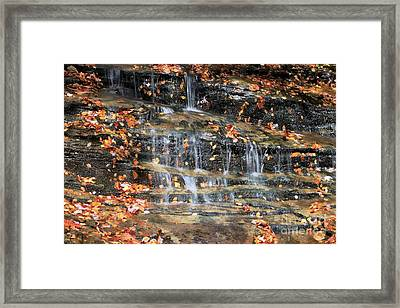 Fall Cascades Framed Print by Benanne Stiens