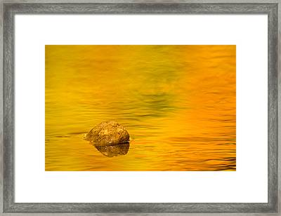 Fall Color Abstract Framed Print by Adam Romanowicz