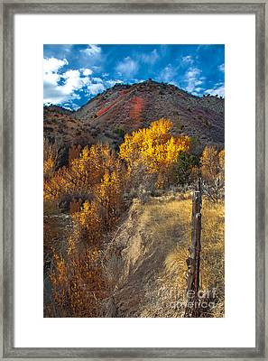 Fall Color Along Fence Line Framed Print by Robert Bales