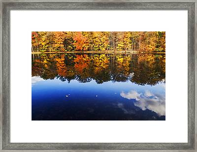 Fall Color And Sky Reflection Framed Print by Vishwanath Bhat