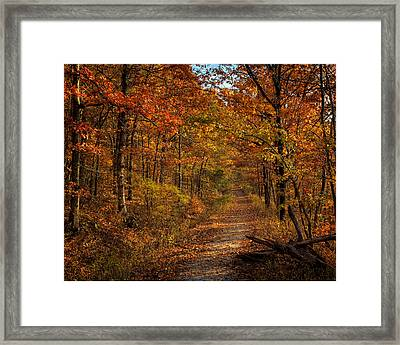 Framed Print featuring the photograph Fall Color At Centerpoint Trailhead by Michael Dougherty