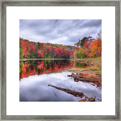 Framed Print featuring the photograph Fall Color At The Pond by David Patterson