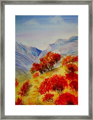 Fall Color Framed Print by Jamie Frier