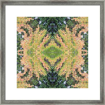 Framed Print featuring the photograph Fall Color Kaleidoscope by Bill Barber