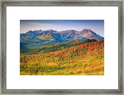 Fall Color On The East Slope Of Timpanogos. Framed Print