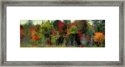 Framed Print featuring the photograph Fall Color Panorama by David Patterson