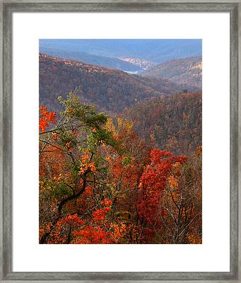 Framed Print featuring the photograph Fall Color Ponca Arkansas by Michael Dougherty