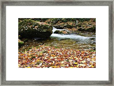 Fall Color Rushing Stream Framed Print by Thomas R Fletcher