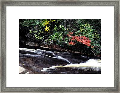 Fall Color Swallow Falls State Park Framed Print by Thomas R Fletcher