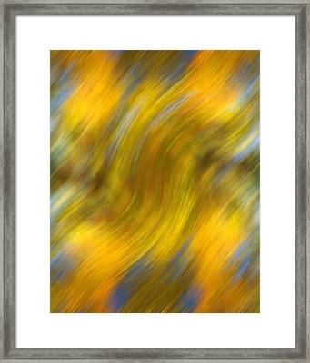 Fall Colors Abstract Framed Print by Bob Coates