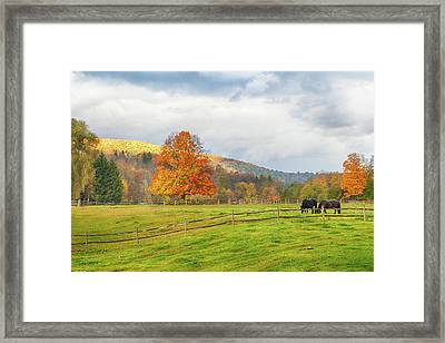 Framed Print featuring the photograph Fall Colors After The Storm. by Jeff Folger