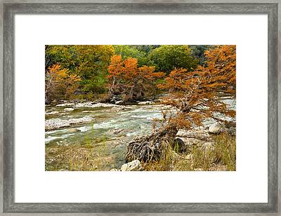 Fall Colors Along The Pedernales River Framed Print by Mark Weaver