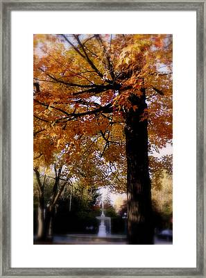 Fall Colors And Fountain Framed Print by Martin Morehead