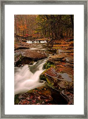 Fall Colors Around The Stream Framed Print