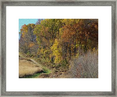 Fall Colors As Oil Framed Print