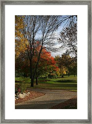 Fall Colors At Brooks Framed Print