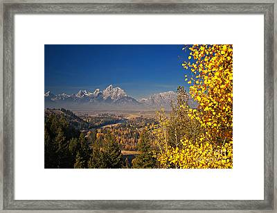 Fall Colors At The Snake River Overlook Framed Print by Sam Antonio Photography