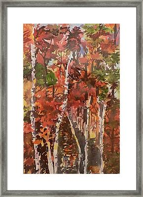 Fall Colors Framed Print by Geeta Biswas