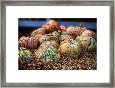 Fall Colors In A Pumpkin Display Framed Print