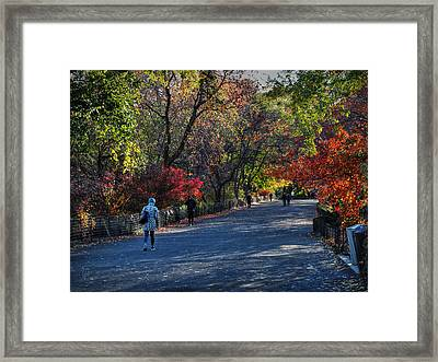 Fall Colors In Central Park 001 Framed Print by Lance Vaughn