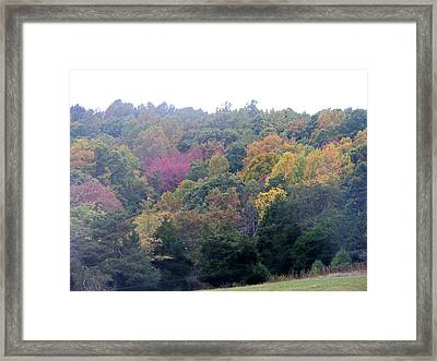 Fall Colors In Rockbridge County Framed Print by Eddie Armstrong