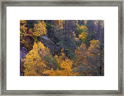 Framed Print featuring the photograph Fall Colors by Ken Barrett