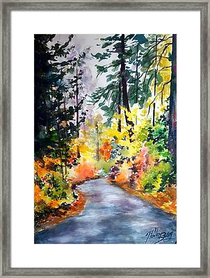 Fall Colors Make Balch Park Framed Print by Therese Fowler-Bailey
