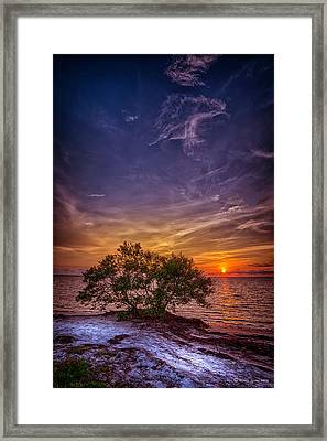 Fall Colors Framed Print by Marvin Spates