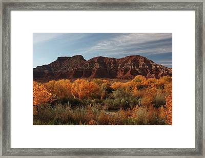 Fall Colors Near Zion Framed Print