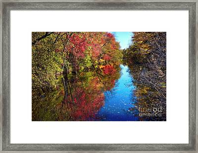 Fall Colors Of Princeton Framed Print by George Oze