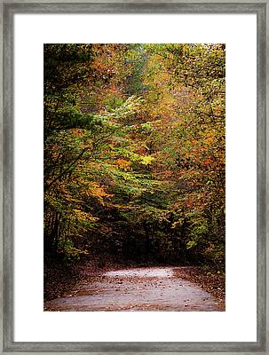 Framed Print featuring the photograph Fall Colors On The Trail by Shelby Young